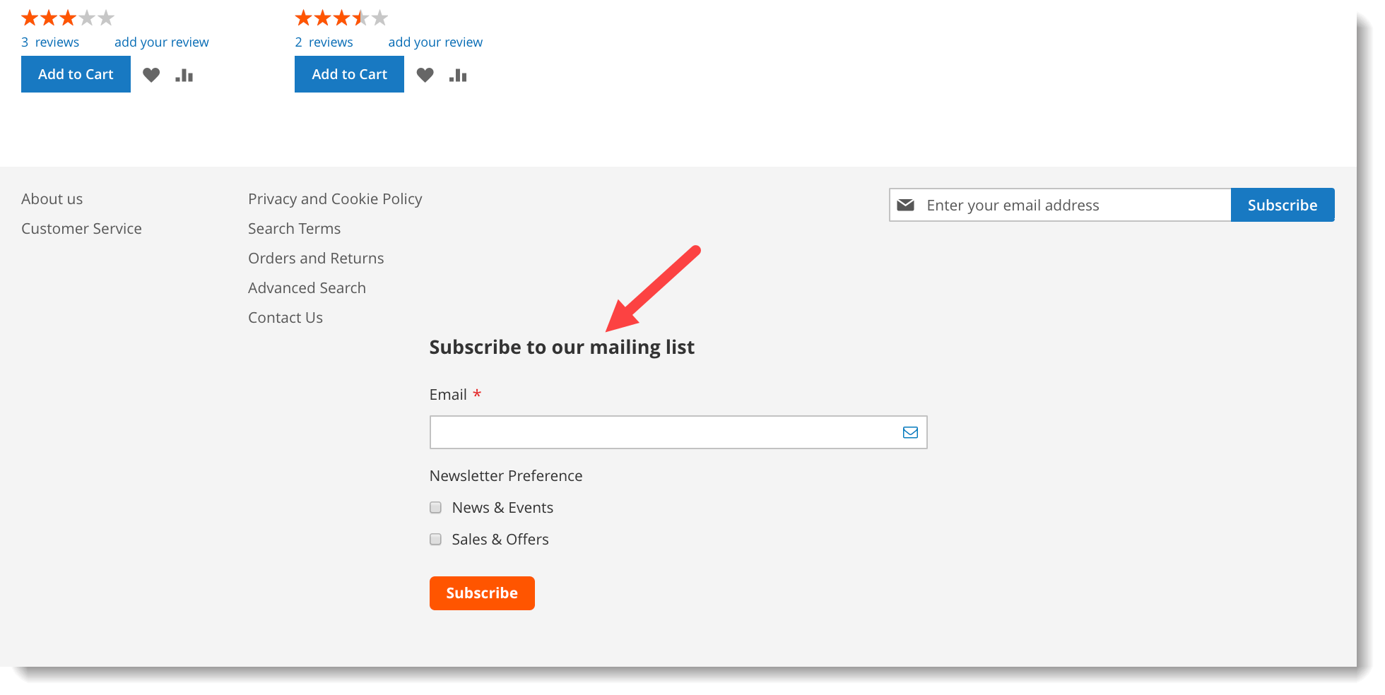 Newsletter signup form _ Add form at page footer container