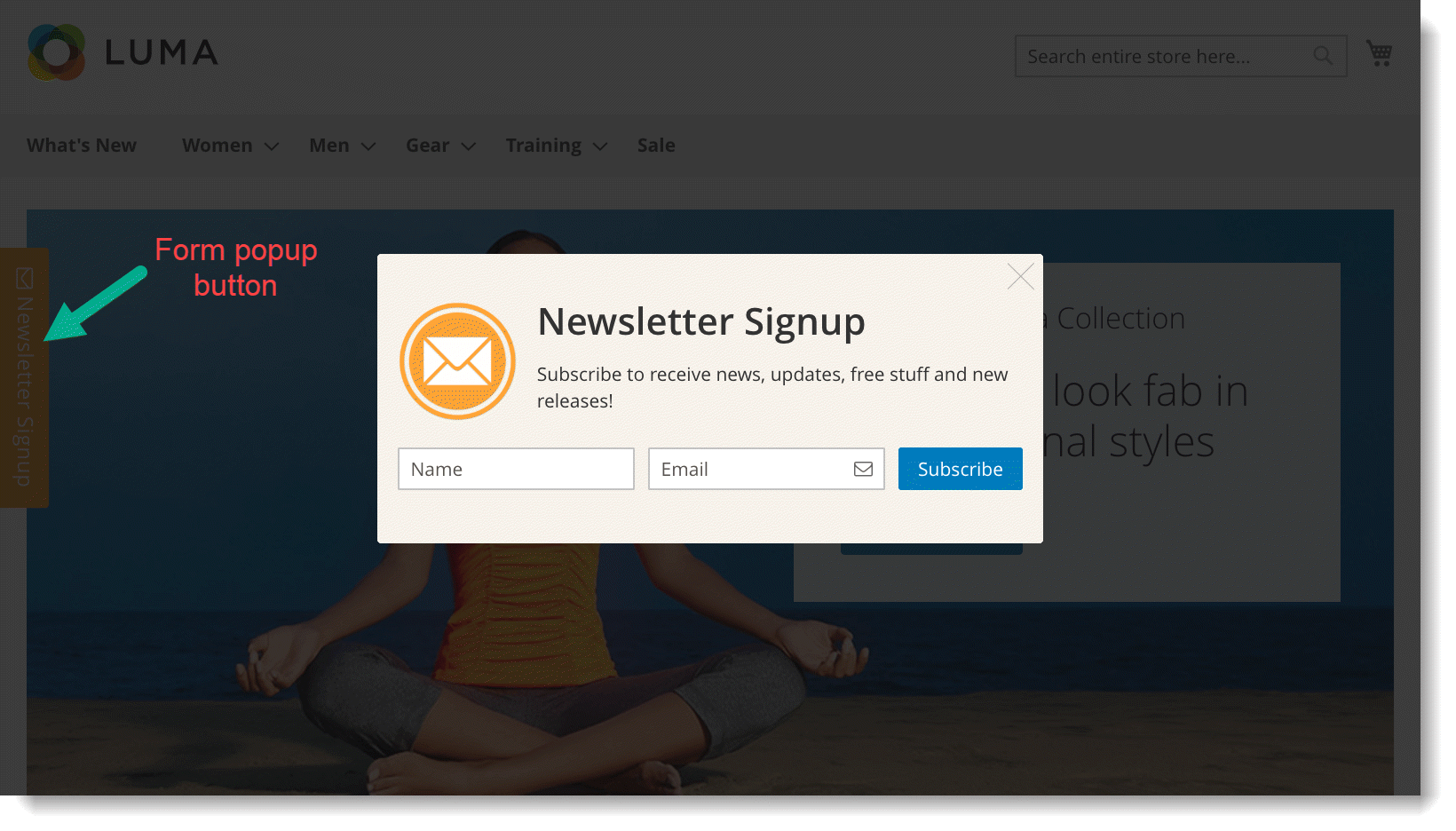 Newsletter signup form _ Popup type