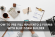 Magento 2 Form Builder _ Pre-fill forms