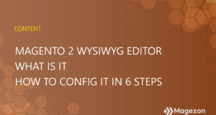What is Magento 2 WYSIWYG editor – How to enable/disable it