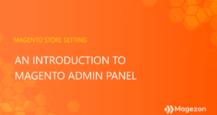 An introduction to Magento admin panel