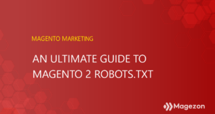 The Ultimate Guide to Magento 2 Robots.txt